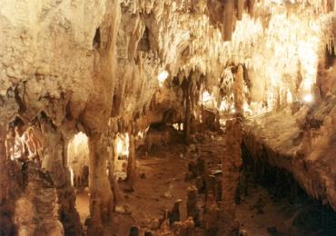cuevas de Ortigosa